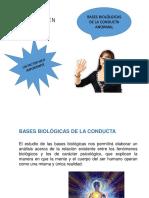 BASES BIOLOGGICAS CONDUCTA AMORMAL