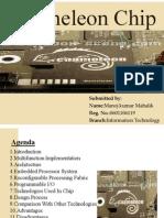 28609262-chameleon-chips-presentation [Compatibility Mode]