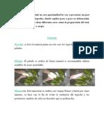 Hola Amigos de Steemit en Esta Oportunidad Les Voy a Presentar Un Post Sobre La Harina de Topocho