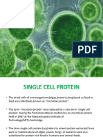 single cell protein2