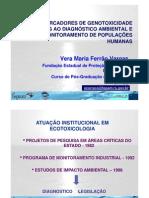 BIOMARCADORES DE GENOTOXICIDADE PPT
