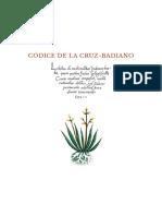 dossier_codice_badiano