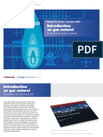 Summary Introduction to Natural Gas-FR