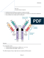 L3 4 Antibodies