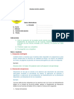1.- PRUEBA ESCRITA ABIERTA (1)