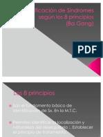 Identificación de Síndromes según los 8 principios