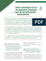 cv_43_Diagnóstico estratégico de la clínica de pequeños animales- Decálogo de las principales conclusiones