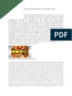 Lutter contre l_obésité exige de s_attaquer à l_industrie agro-alimentaire
