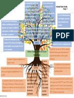 Árbol de problema_REGIMEN TRIBUTARIO