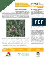 Agricola Nov 10_Web