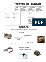 5-Animal-Groups-Characteristics-of-Animals-Free-Worksheets-2