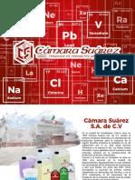 Presentacion Camara Suarez