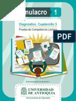 Simulacro diagnístico parte 3
