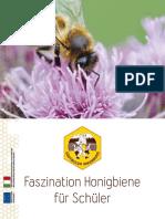 faszination-honigbiene-fu-r-schu-ler