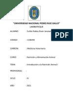 UNIVERSIDAD NACIONAL PEDRO RUIZ GALLO1