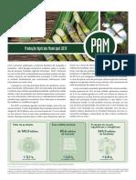 Produção Agrícola Municipal 2019