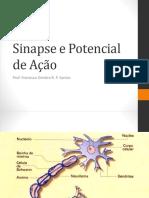 Sinapse e Potencial de Ação