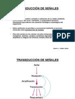 1B Ref Transduccion de Señales Español