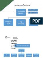 1.1.2 ORGANIGRAMA ESTRUCTURAL Y FUNCIONAL