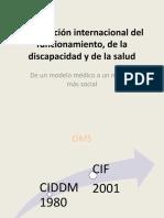 Clasificación CIF Diversidad 2017 (2)
