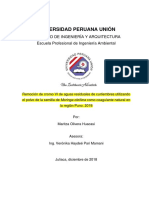 Maritza Tesis Licenciatura 2018