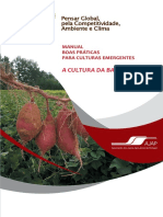 Manual_Culturas_Emergentes_Batata_Doce_Digital