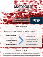 A01_Hematopoiese