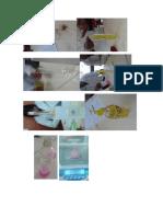 Edwin ingaluque condori laboratorio viscosidad unaj ambiental fisicoquimica