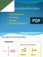 8 macromoléculas