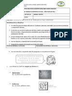 GRADO 5 ( CALSIFICACION DE LAS CELULAS) MARZO 2021