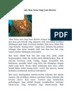 Mengenal Jenis Jenis Ikan Nemo Yang Lucu Beserta Gambarnya