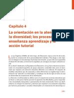 La orientación en la atención a la diversidad los procesos de enseñanza aprendizaje y la acción tutorial