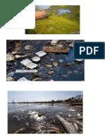 Galería sobre la contaminación hídrica