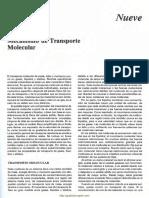 Lectura2 Transporte Molecular