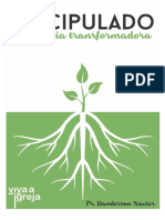 DISCIPULADO UMA IDEA TRANSFORMADORA