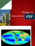 B9 - Fotossíntese