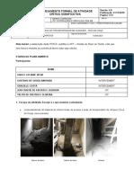 PFACS - Atividade Critica Toca Da Onça Rev 4-10-06-2020