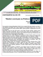 BOLETIM INFORMATIVO Nº 003 - segunda-feira,03.08.2009