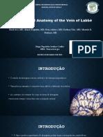 Anatomia da Veia de Labbé