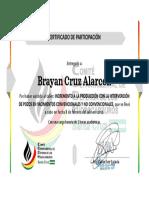 Brayan Cruz Alarcon