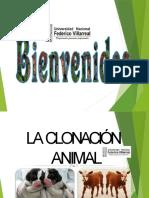 clonacinanimal-170711043410
