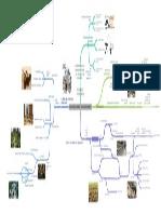 Mapa Mental Sociologia Rural en la Agronomia