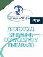 PROTOCOLO_SINDROME_CONVULSIVO_Y_EMBARAZO
