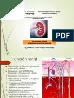 7.Fisiología Renal y Sd Nefrologicos