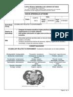 Guia de Aprendizaje Autonomo Cuarto Grado 2 Periodo Ciclos 1 2 3 4