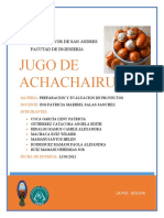 ENCUESTA JUGO DE ACHACHAIRU-PREPARACION Y EVALUACION DE PROYECTOS