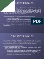 a1-circuitos-ramales