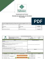 TX31FP002 Ficha de Proceso Gestion de Los Procesos