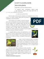CN Guía 3° n°29 31-08 al 04-09