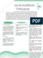 Tipos de Auditoria Tributaria